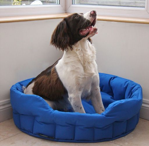 Medium Dog Bed Basket - Royal Blue